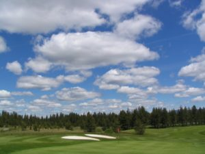 Quail Run Golf Course miniutes away in La Pine Oregon